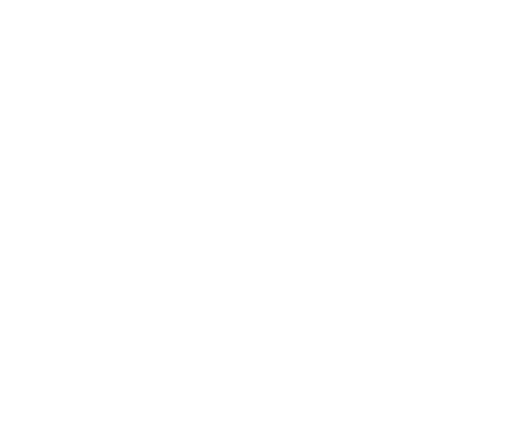 Sea Spider Logo